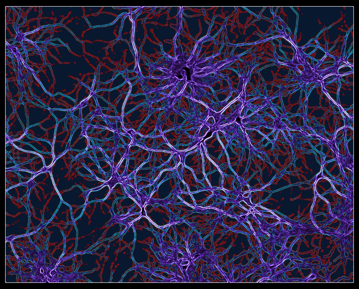Neural-network-4